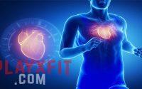7 Langkah Untuk Memperkuat Jantung